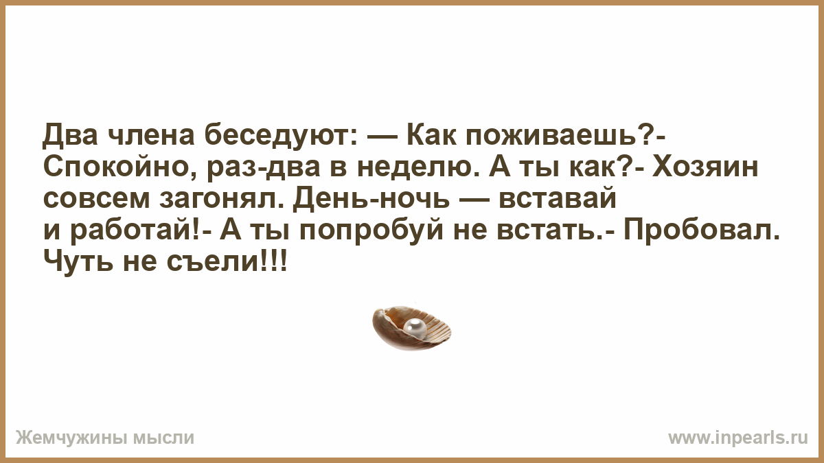 kto-proboval-dva-huya-figuristie-bolshie-zhenshini-erotika